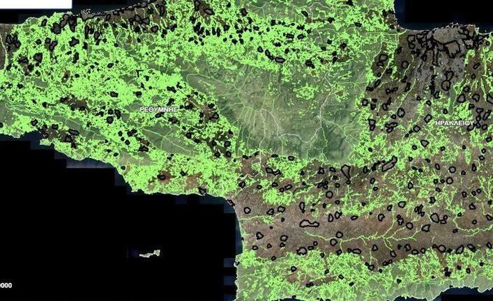 Να αποσυρθούν τώρα οι δασικοί χάρτες
